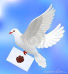 colombe-avec-la-lettre-13305554