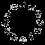 roue-zodiac